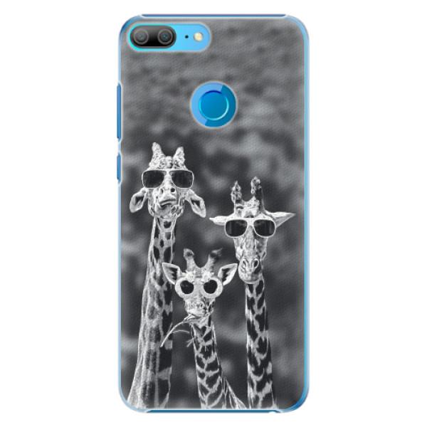 Plastové pouzdro iSaprio - Sunny Day - Huawei Honor 9 Lite