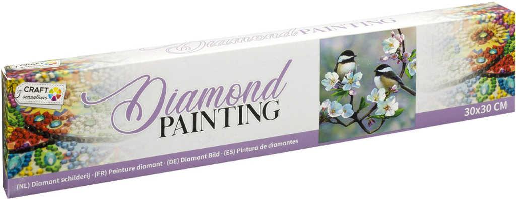 Diamond mozaika ptáčci 30x30cm malování s kamínky kreativní set v krabici