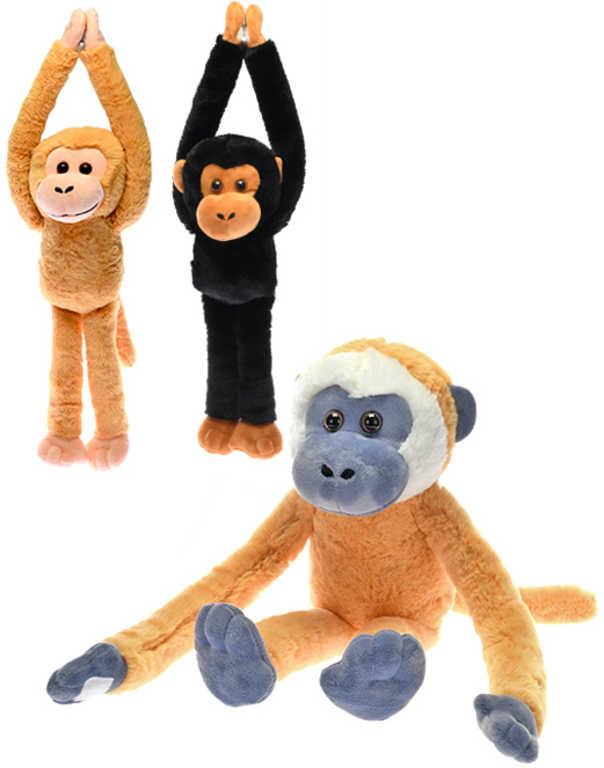 PLYŠ Opice dlouhé ruce a nohy na suchý zip 3 barvy *PLYŠOVÉ HRAČKY*