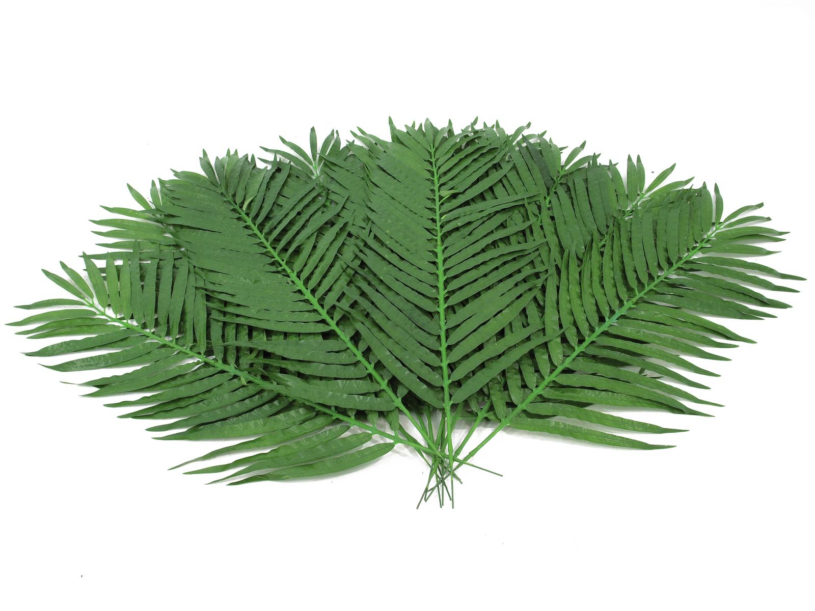 Kokosový palmový list krátký, 90 cm, 12 ks