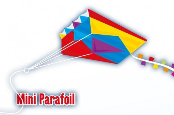 MINI PARAFOIL 60x51 cm