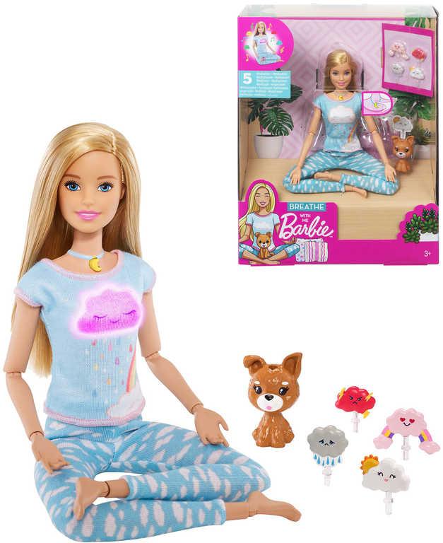 MATTEL BRB Barbie wellness a meditace set panenka s pejskem a doplňky