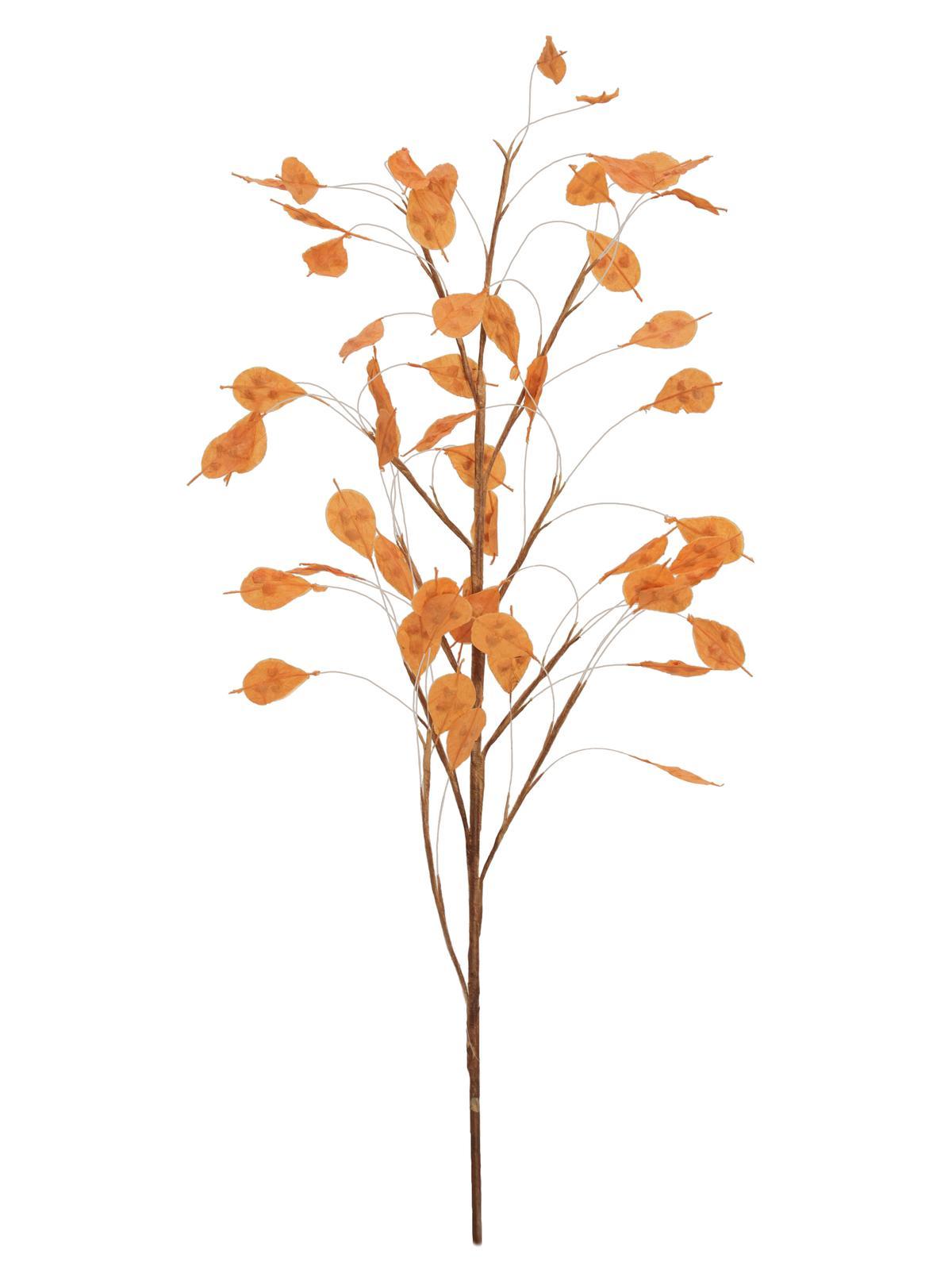 Větvička aronie (EVA), oranžová