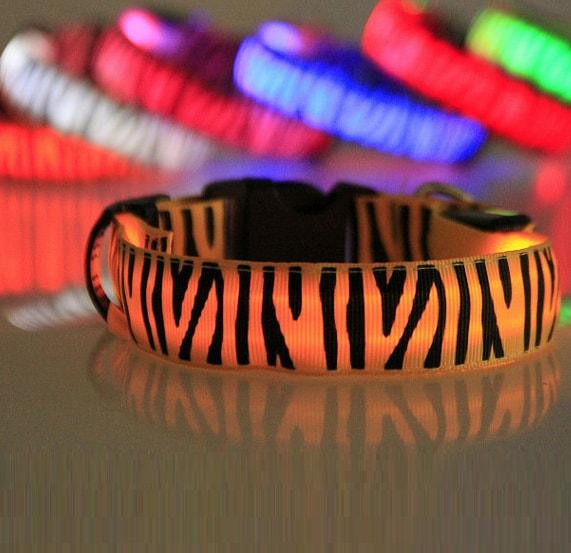 Reedog svíticí obojek pro malé, střední a velké psy zebra