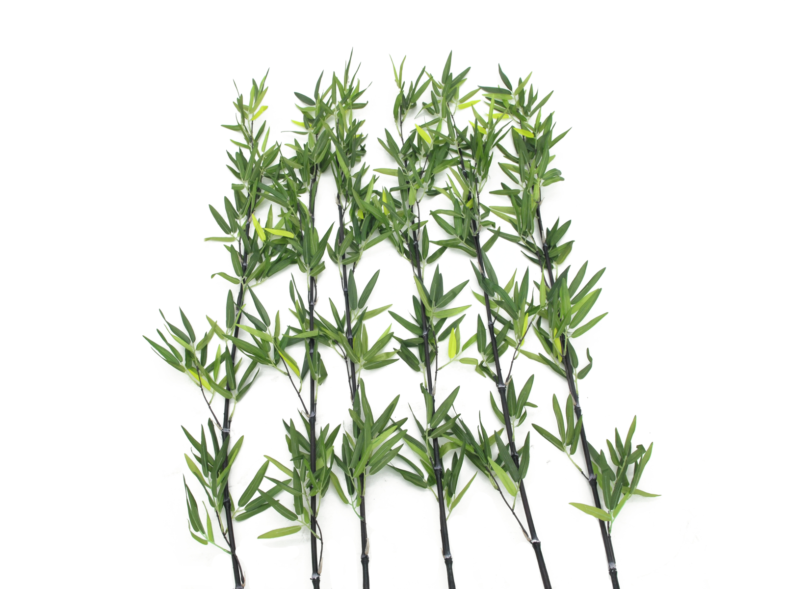 Bambus s listy, 180 cm, sada 6 ks