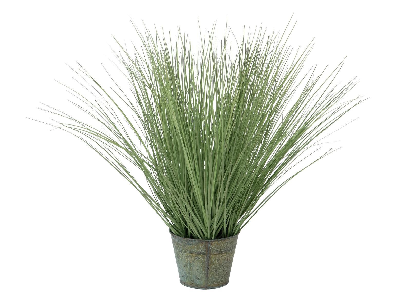 Tráva malá, 65cm