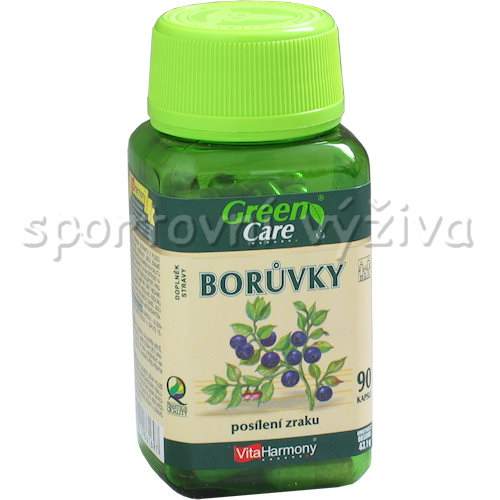 Borůvkový extrakt 40 mg 90 kapslí