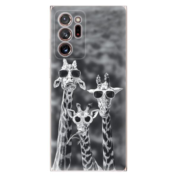 Odolné silikonové pouzdro iSaprio - Sunny Day - Samsung Galaxy Note 20 Ultra