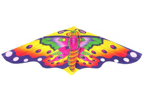 Drak létací motýl