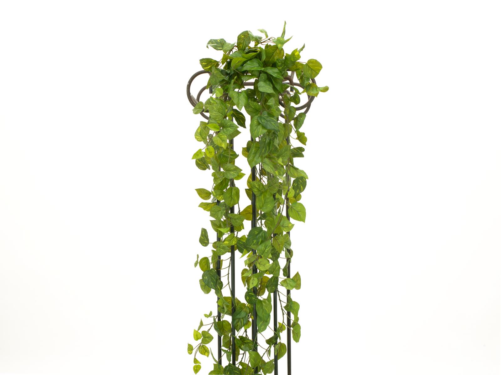 Girlanda Photosu Premium, 170 cm, PEVA