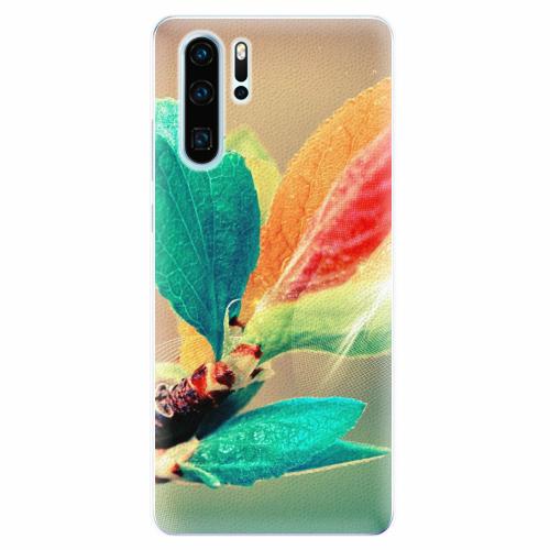 Silikonové pouzdro iSaprio - Autumn 02 - Huawei P30 Pro
