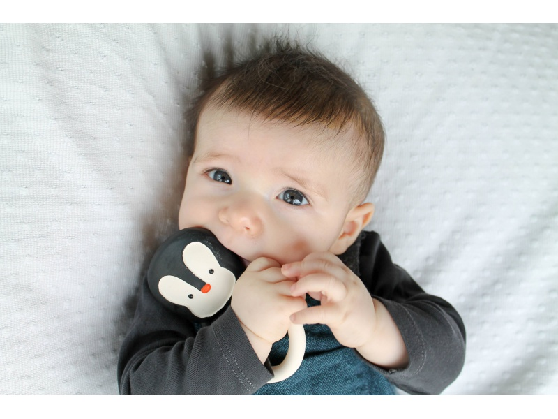 Lanco - Kousátko tučňáček