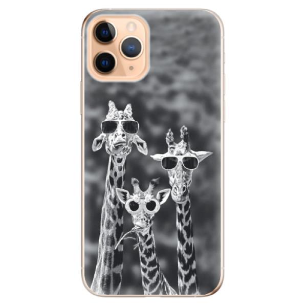 Odolné silikonové pouzdro iSaprio - Sunny Day - iPhone 11 Pro