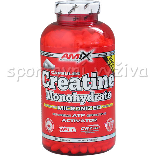 Creatine Monohydrate 500 kapslí