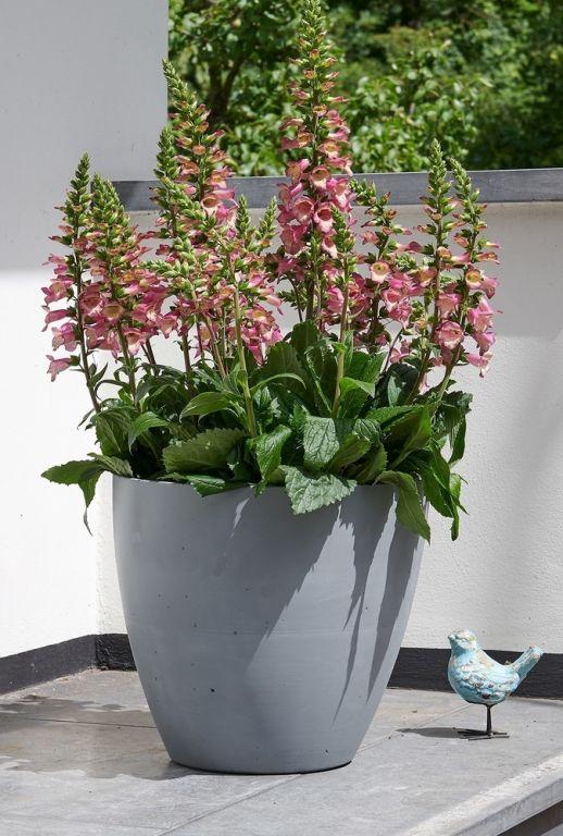 Plastový květináč BETON PLANTER - 53 cm