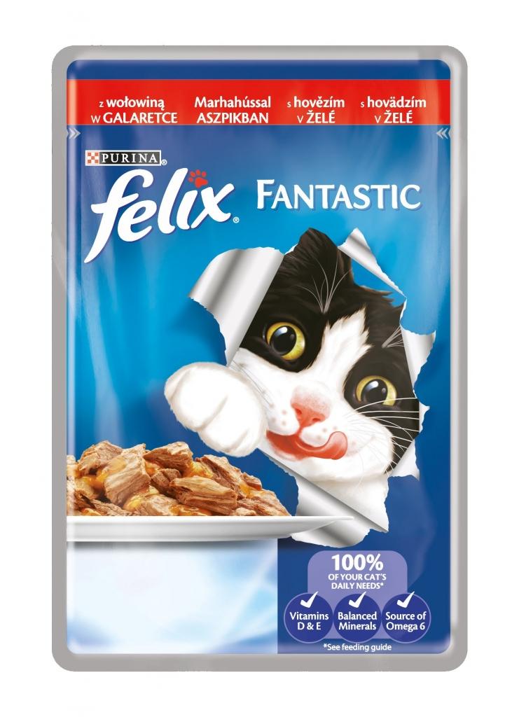 Fantastic s hovězím v želé kapsička pro kočky 100 g