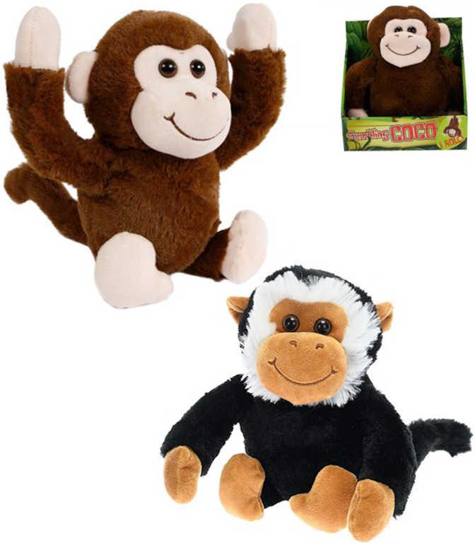 PLYŠ Opice veselá 25cm na baterie různé barvy Zvuk *PLYŠOVÉ HRAČKY*