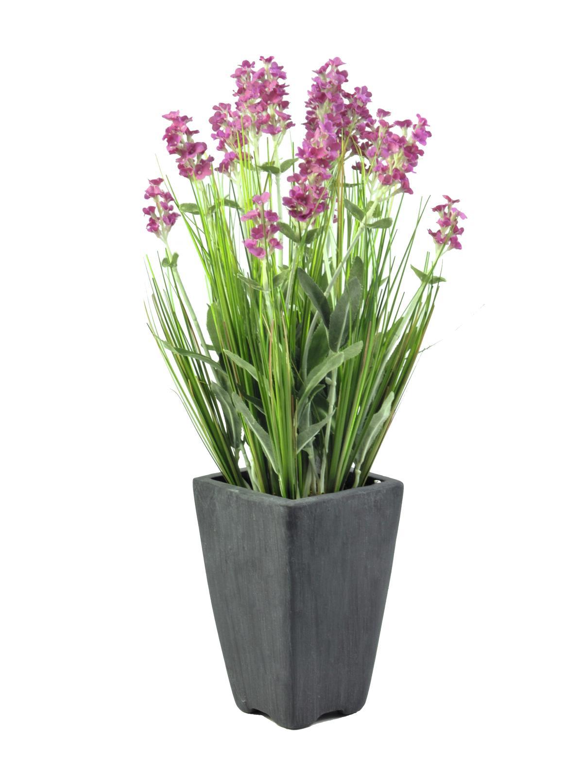 Levandule v květináči růžová, 45 cm
