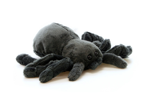 Plyš Tarantule