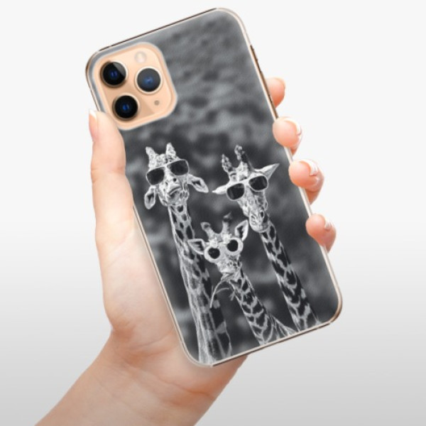 Plastové pouzdro iSaprio - Sunny Day - iPhone 11 Pro