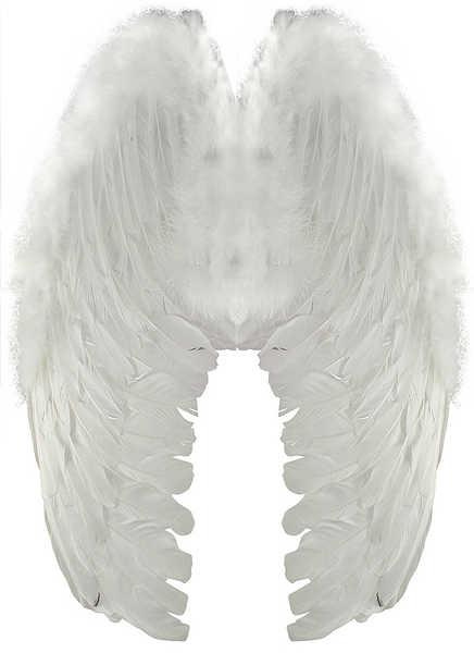 KARNEVAL Křídla andělská peří malé KARNEVALOVÝ DOPLNĚK