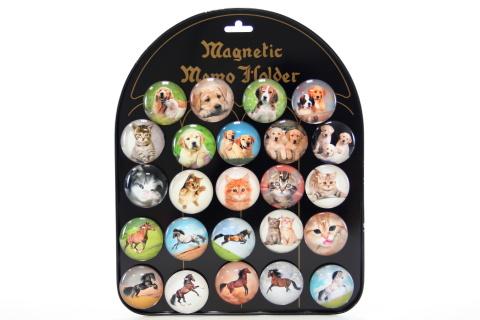 Magnety psi, kočky, koně 24/bal