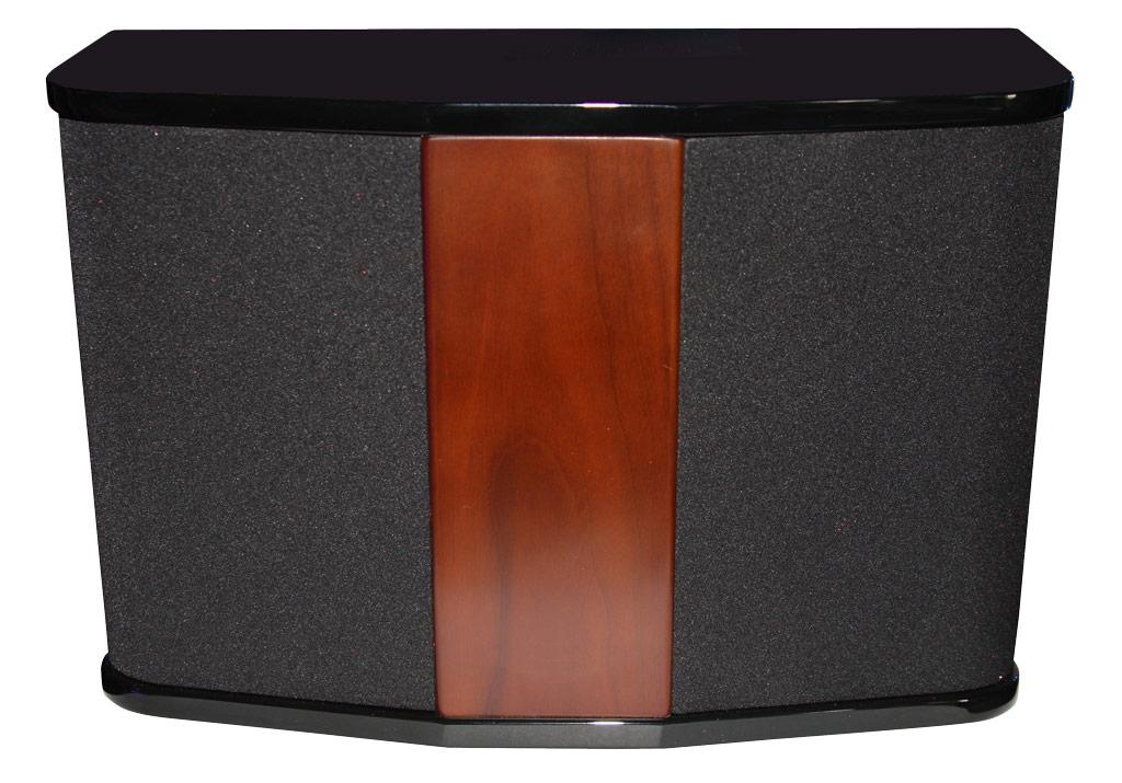 DSPPA Dřevěný nástěnný reprobox DSP506