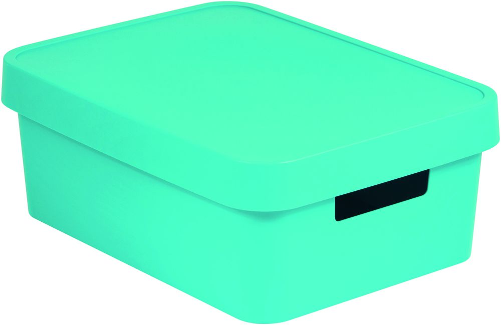 Úložný box INFINITY 11L - modrý