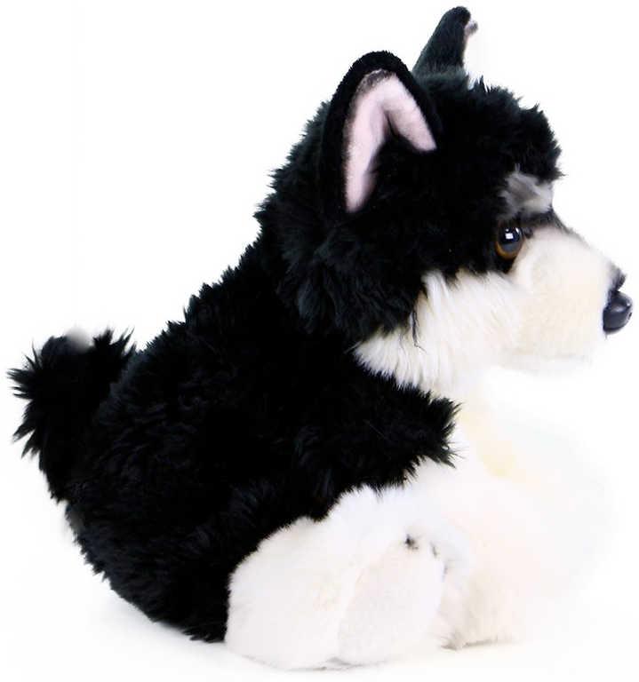 PLYŠ Pes Malamut sedící 28cm exkluzivní kolekce *PLYŠOVÉ HRAČKY*