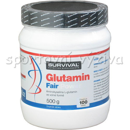 Glutamin Fair Power 500g