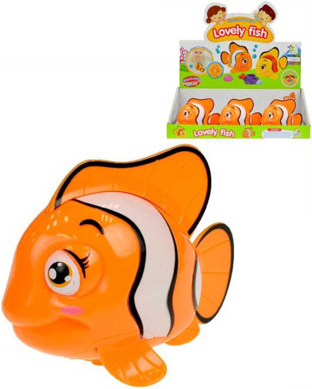 Rybka oranžová klaun očkatý 10cm plavací na klíček do vody