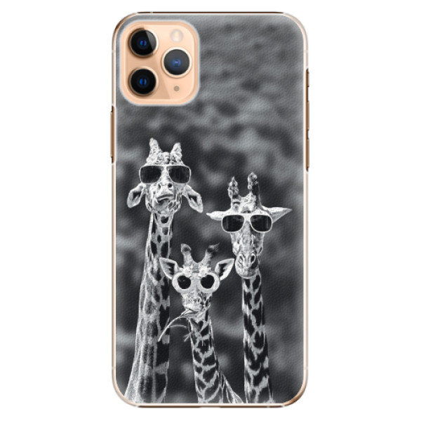 Plastové pouzdro iSaprio - Sunny Day - iPhone 11 Pro Max