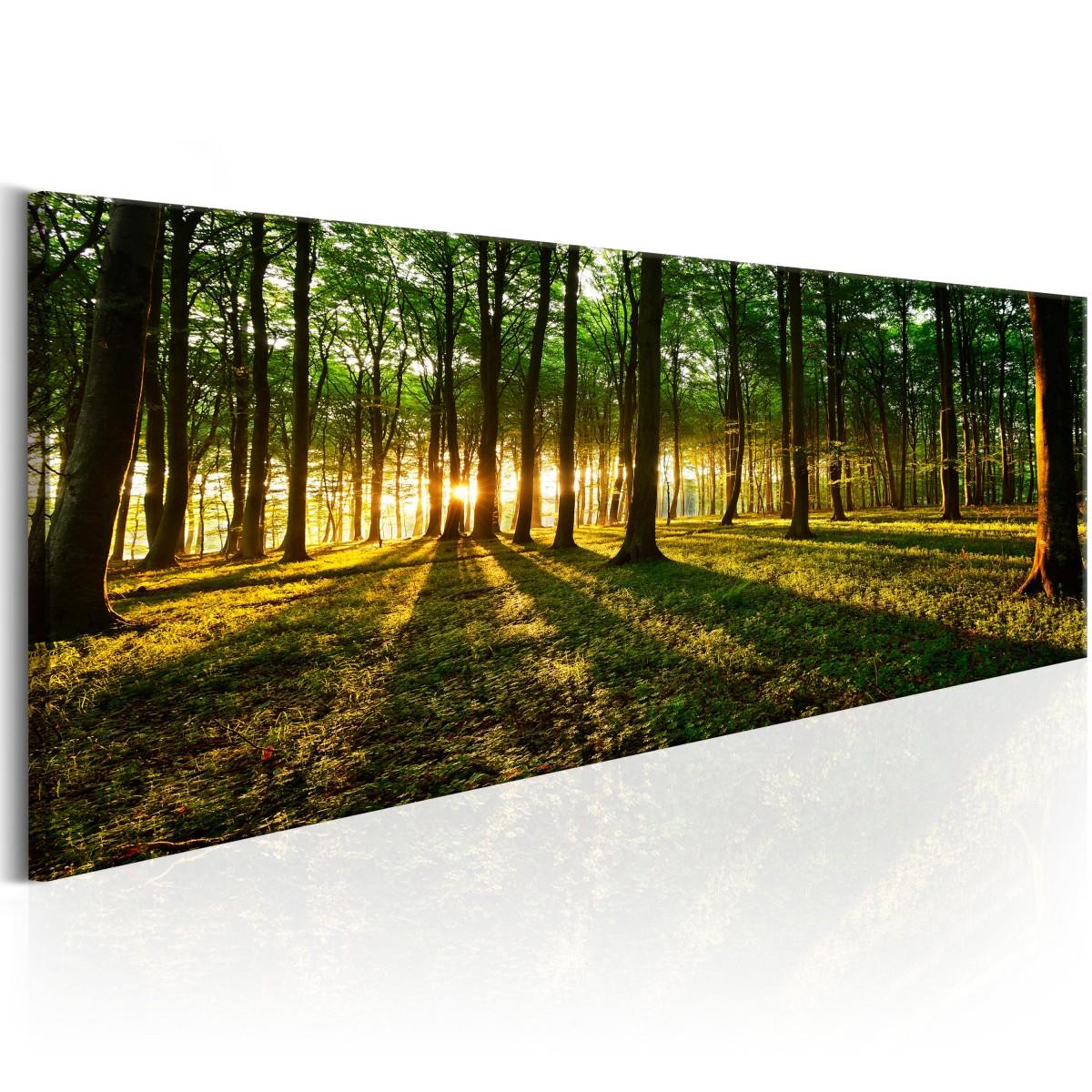Stín stromů - 135x45 cm