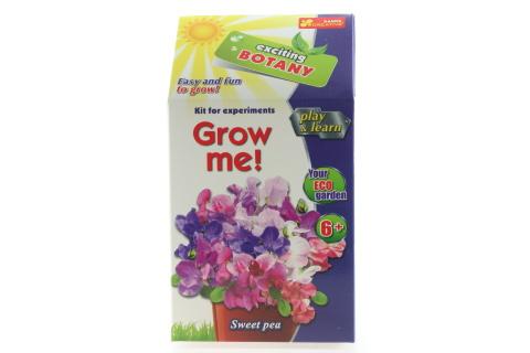 Vypěstuj si květinu - Hrachor vonný