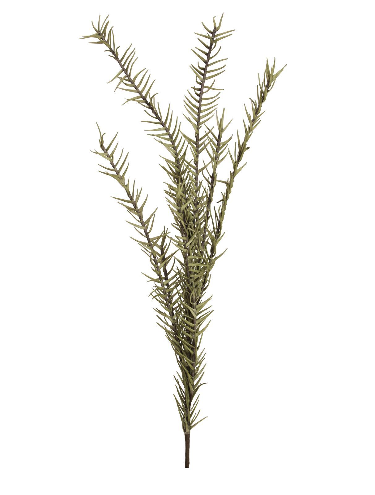Větvička rozmarýn (EVA), zelená