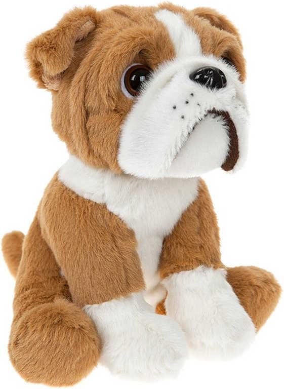 PLYŠ Pes bulldog sedící 16cm *PLYŠOVÉ HRAČKY*