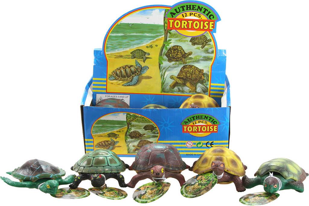 Želva plastová 15cm měkké tělíčko 5 druhů