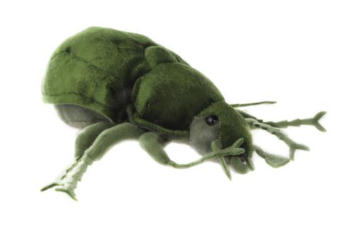 Plyš Brouk zelený