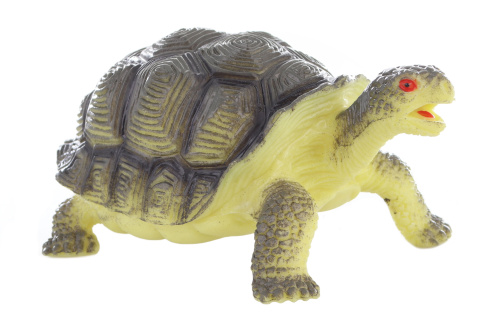 Želva 11 cm