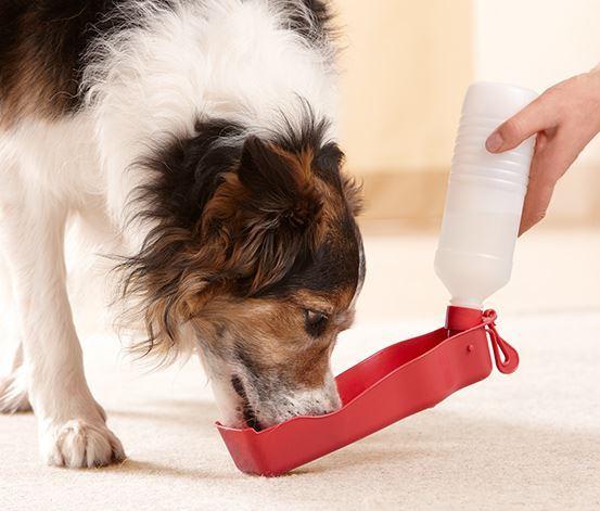 Cestovní láhev pro psy - červená