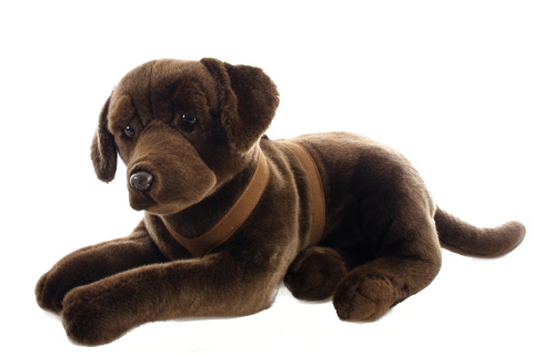 Plyš Labrador hnědý