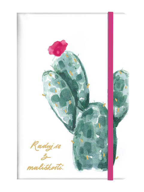 Blok - Kaktus
