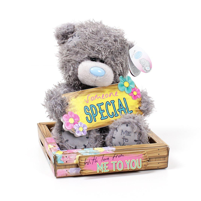 Medvídek Me to You - Someone special