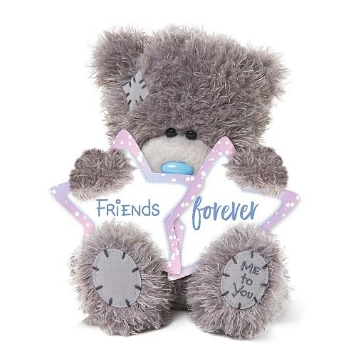 MTY medvídek přátelé navždy hvězdy