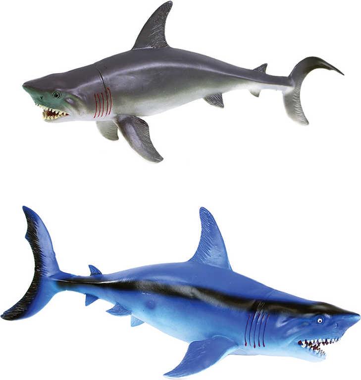 Žralok plastový velký 34cm se zvukem pískací 2 barvy