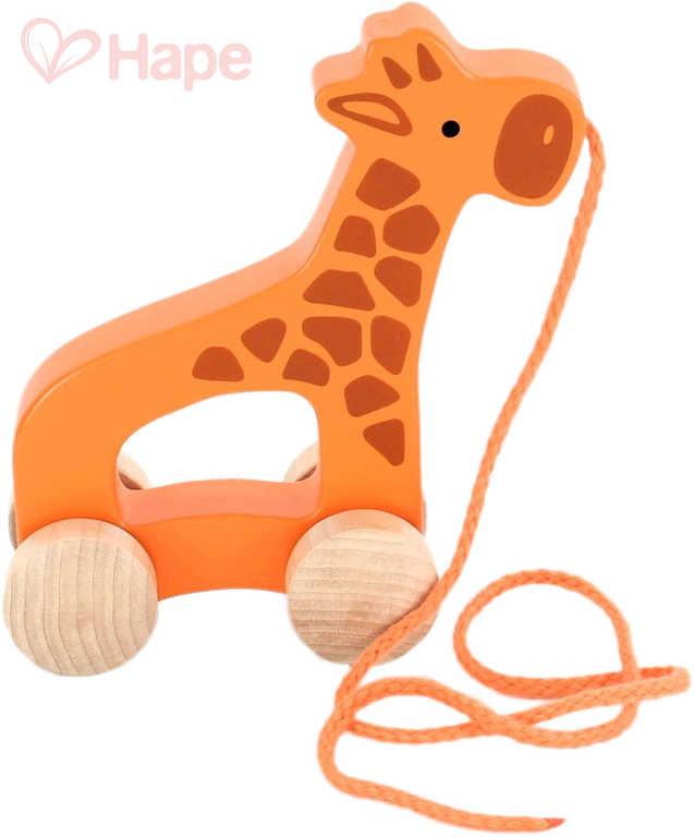 HAPE DŘEVO Baby žirafa tahací 15cm pro miminko *DŘEVĚNÉ HRAČKY*