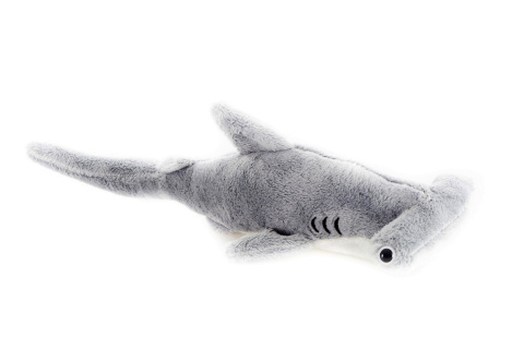 Plyš Kladivoun žralok
