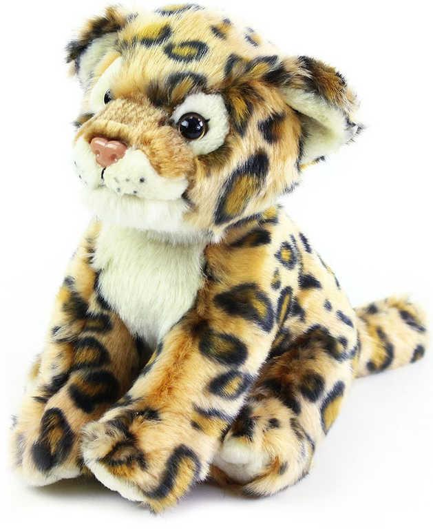 PLYŠ Gepard 20cm sedící *PLYŠOVÉ HRAČKY*