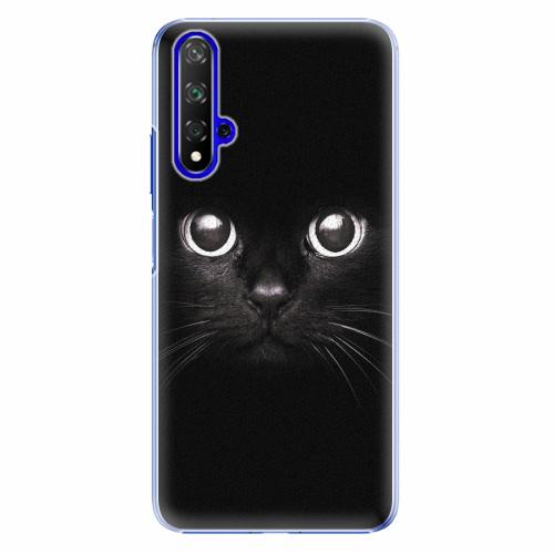 Plastový kryt iSaprio - Black Cat - Huawei Honor 20