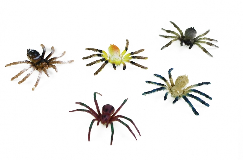 Pavouci, 5 ks v sáčku